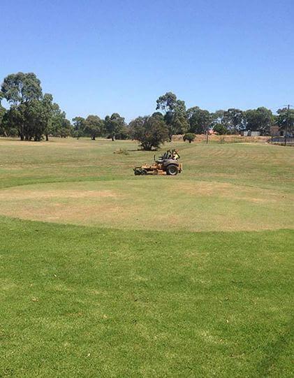 Affordable Commercial Garden Maintenance in Melbourne