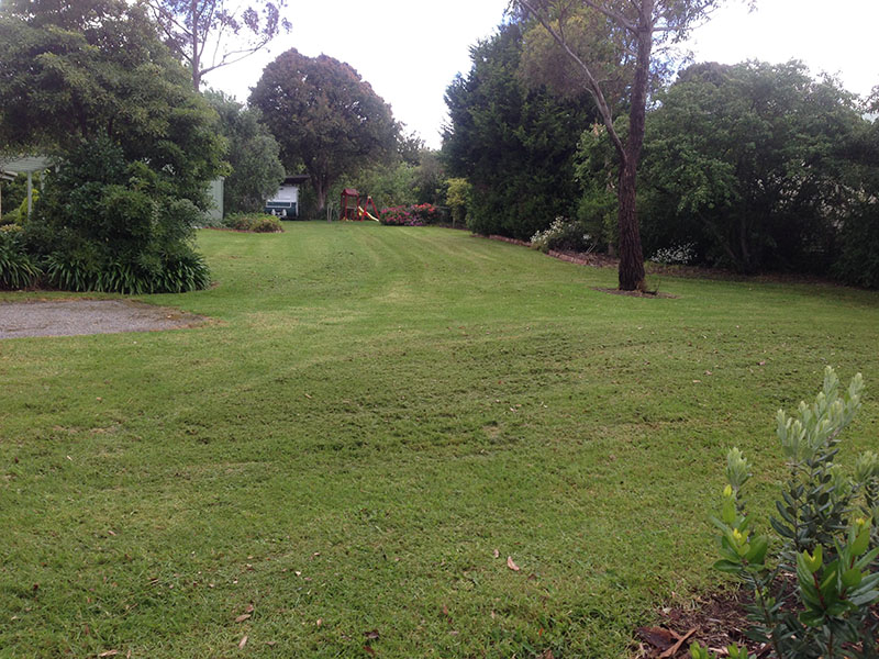 Commercial Garden Maintenance Melbourne